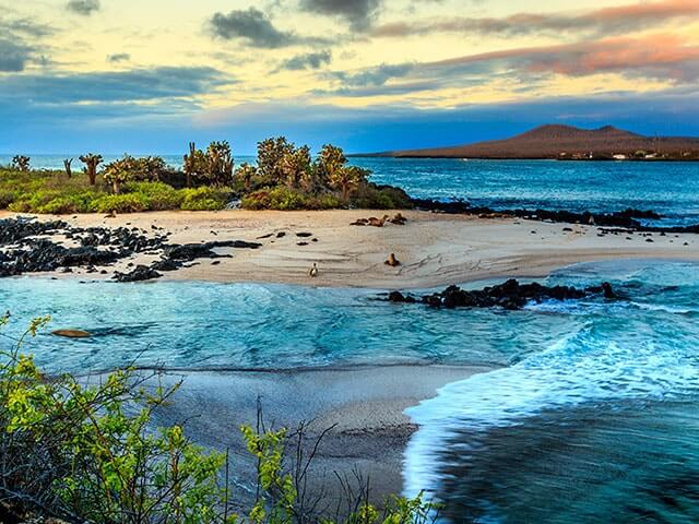 Book your flight to Galapagos Islands with eDreams